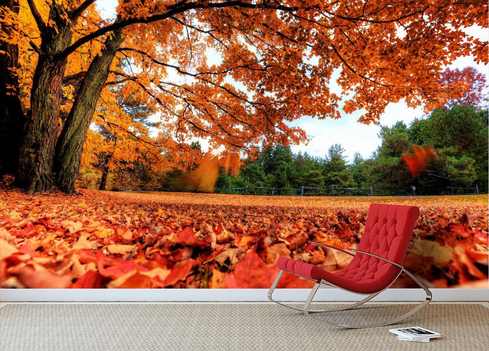 3D Foresta Acero Parete Murale Foto Carta da parati immagine sfondo muro stampa
