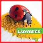 Ladybugs by Mari Schuh (Hardback, 2013)