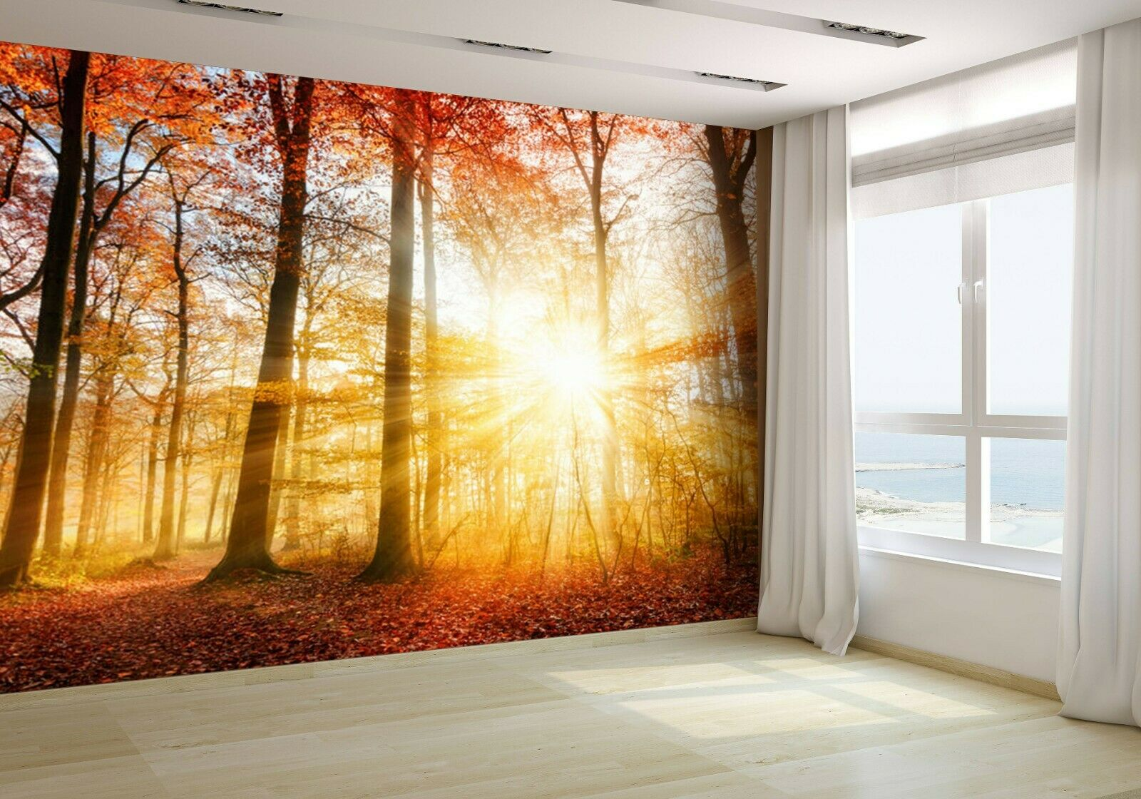 Warm Autumn Scenery in a Forest Wallpaper Mural Photo 45080526 budget paper