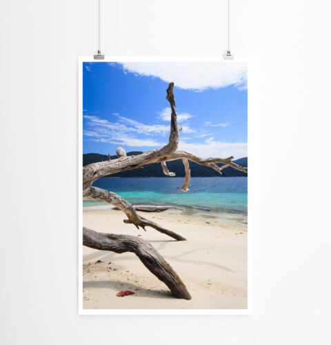 60x90cm Poster Landschaftsfotografie – Strand der Insel Li-Pe