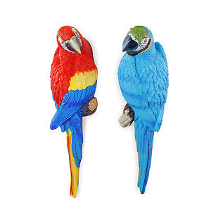 Tango-amp-Rio-the-Wall-Mountable-30cm-Realistic-Macaw-Parrot-Bird-Garden-Ornaments