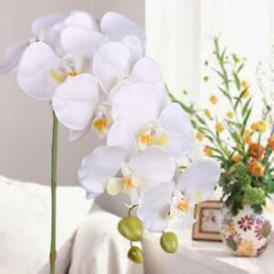 Artificial-Butterfly-Orchid-Flowers-Bouquet-Phalaenopsis-Wedding-Decor-White-RG