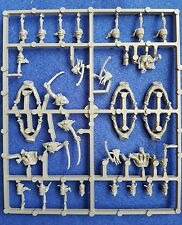 Perry miniatures Napoleonic French hussars