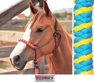 Classic-Equine-Rope-Halter-Turquoise-Yellow-Horse-Tack
