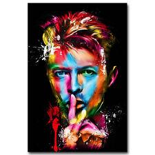 New David Bowie Hot Music Singer Star Silk 24x36Inch Custom Poster P-164