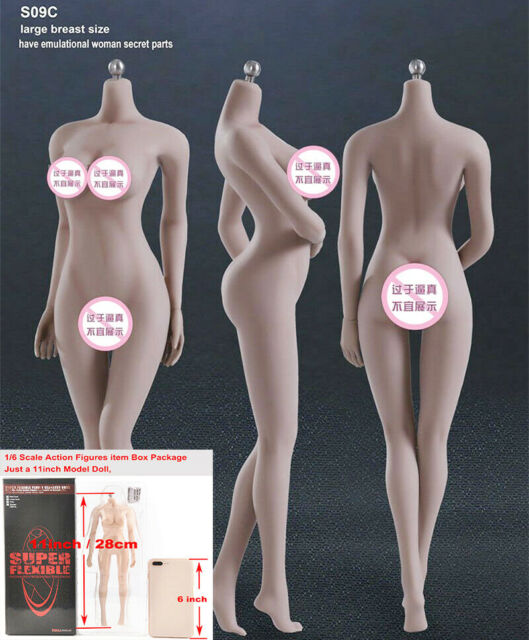 1//6 Seamless Female Action Figure Body Model for TBLeague ZY Toys Head Sculpt
