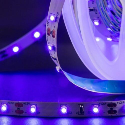 5-20m UV Schwarzlicht LED Strip Lichtleist Ultraviolet Lichterkette 2835SMD IP20