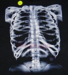 GLOW X-RAY SKELETON-Bones Ribs Anatomy Biology Science Halloween ...