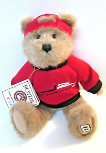 Boyds-Bear-DALE-EARNHARDT-Jr-Jointed-Embroidered-Shirt-Paw-and-Hat-Tags-Nascar