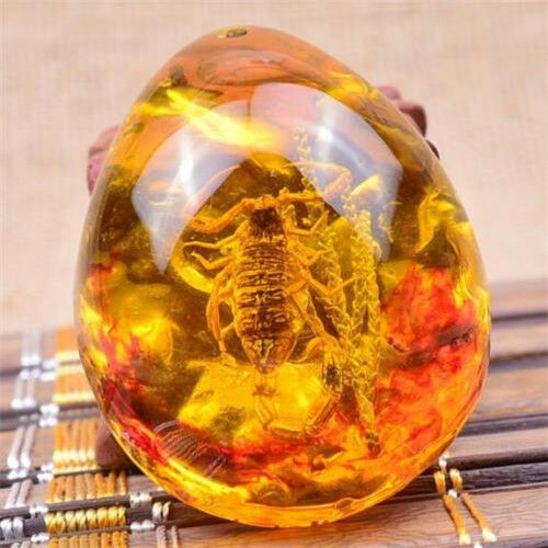 Elegant Scorpion Amber Resin Amber Scorpion Insect Stone Pendant Necklace Gift