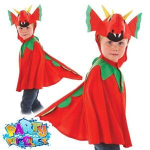 Childs Friendly Dragon Welsh St George Book Week Tabard Fancy Dress Costume