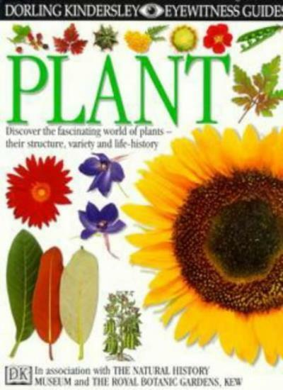 Plant (Eyewitness Guides) By David Burnie