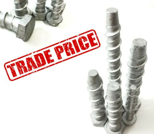 ** Precio de comercio ** Timco Multi Fix Pernos de hormigón M6 M8 M10 M12 M16-Cajas Completo