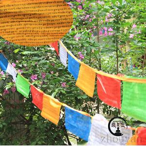 Details about 16 FT  BLESSED TIBETAN WIND HORSE PRAYER FLAG: MEDICINE  BUDDHA FAMILY HEALING