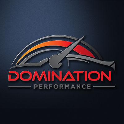 DominationPerformance