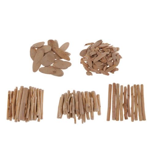 250g Driftwood Wooden Branch Sticks Slices for Art Crafting Model Building