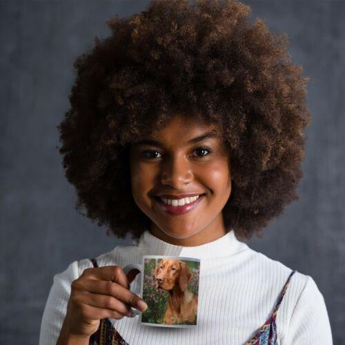 Drinks Mug Cup Kitchen Birthday Office Fun Gift #16295 Beautiful Vizsla Dog