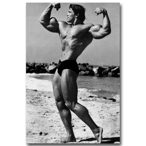ARNOLD SCHWARZENEGGER Bodybuilding Fitness Silk Poster 13x20 24x36inch 008