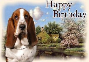 Basset hound dog design a6 textured birthday card bdbasset by image is loading basset hound dog design a6 textured birthday card bookmarktalkfo Gallery