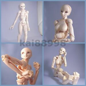 S.F.B.T-3 Special Fullaction Body Type-3 Action Figure New No Box 29cm