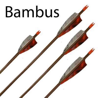 """Länge 28"""" Cheap Price Bambuspfeil I 30-35 Lbs"""
