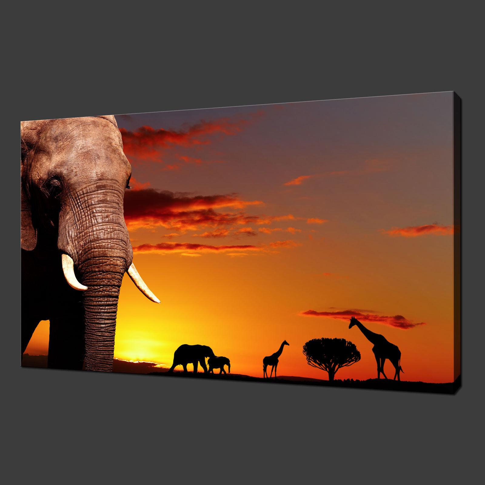 BELLISSIMO tramonto africano Animali Deserto Scatola Tela Stampa Wall Art Picture