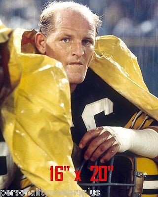 """Green Bay Packers~Ray-Nitschke ~Color~Photo~Linebacker~16/"""" x  20/"""""""