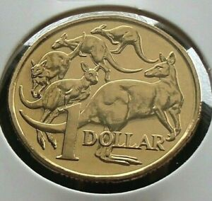 2007 $1 Mob of Roos Kangaroo Australian Dollar Coin UNC condition in 2x2 Holder