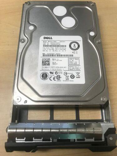 "Dell 2TB 6G 7.2K 3.5/"" SAS WDC07 0WDC07 HDD Hard Drive W// Tray Server LFF"