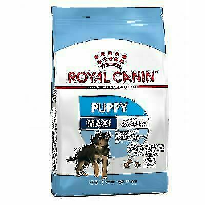 Royal Canin Maxi Puppy Junior Complete Dog Food Large ...
