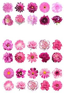 30-Beautiful-MIXED-PINK-Flowers-Edible-Wafer-Paper-Cupcake-Cake-Toppers