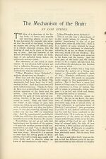 1903 Magazine Article Mechanism of the Brain How it Works Early Medicine