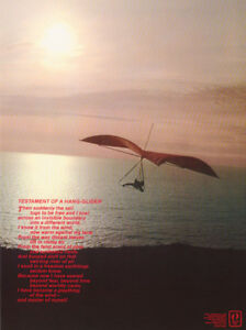POSTER-SPORTS-TESTAMENT-OF-A-HANG-GLIDER-FREE-SHIPPING-H10102-RC54-i