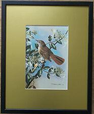 Nightingale Vintage 1970 print - Basil Ede, 20'' x 16'' frame - honeysuckle