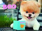 Boo - Der süßeste Hund der Welt (2012, Gebundene Ausgabe)