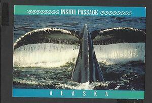 Alaska-Joe-Colour-Postcard-Inside-Passage-Humpback-Whale-Alaska-unposted