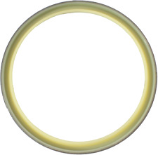 Seal 1661496 Fits Caterpillar 307c 322bln 322cfm 324dfm 324dl