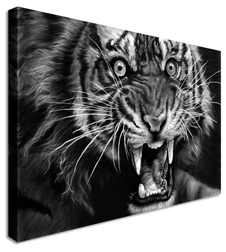 Gran furia Animal Animal Animal Tigre blancoo y Negro Lona Parojo Arte Imágenes 2685bc