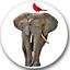 Elephant Sticker Seals No.802 african animal stickers,12 round stickers