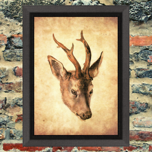 Roebuck Head Antlers Nature Art Print Antique Effect Paper No Frame Included