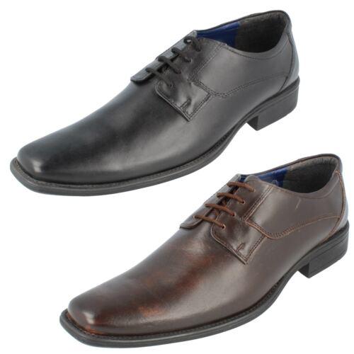 negro cordones Donnari elegantes Bruno de cuero zapatos Hombres de Nn905 marrón zxqHgRI7