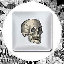 Curio Trinket Tray- Skull Skeleton Head Bone Anatomy Jewellery Coin Dish Magpie