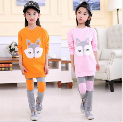 Toddler Kid Baby Girl Cartoon Fox Print Long Sleeve Loose Dress Outfits l