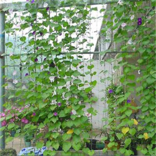 1.8x1.8m Garden Green Nylon Trellis Netting Support Climbing Plant Nets Fence  X
