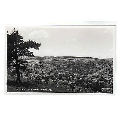 Exmoor National Park - Real Photo Postcard c1950s
