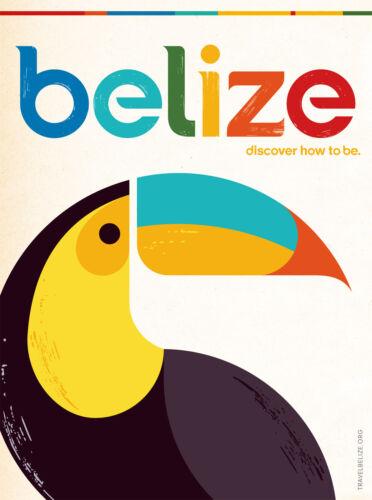 0045 Vintage Travel Poster Art Belize