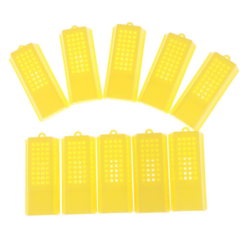 10Pcs Professional Queen Bee Cage Catcher Plastic Beekeeping Travelling But  BCD