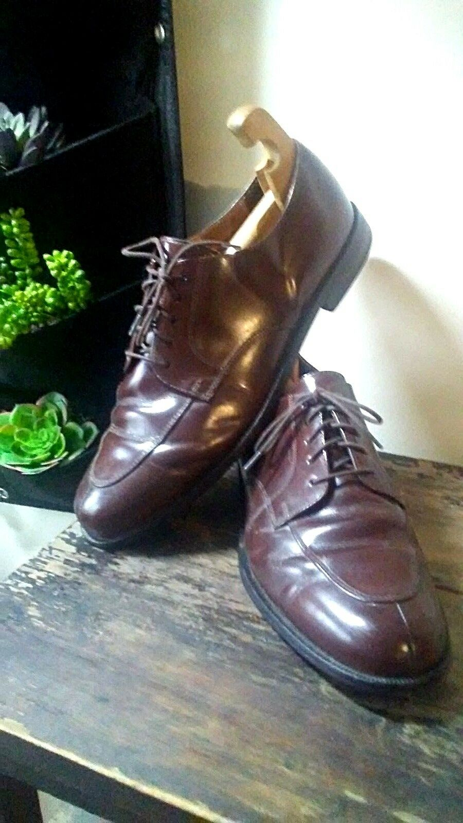 Men's 12D Cole Haan Dark Brown Leather Sole Leather Upper Lace Up Oxfords India