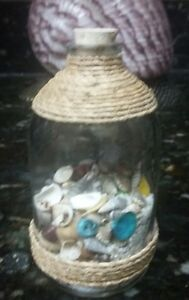 Beach-in-a-Bottle-w-Shells-and-Natural-Color-Sand-Approx-4-034-High-Coastal-Decor