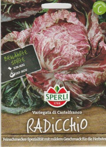 RADICCHIO VARIEGATA di CASTELFRANCO autunno insalata raccolto circa 100 semi